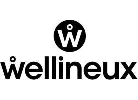 Wellineux logo